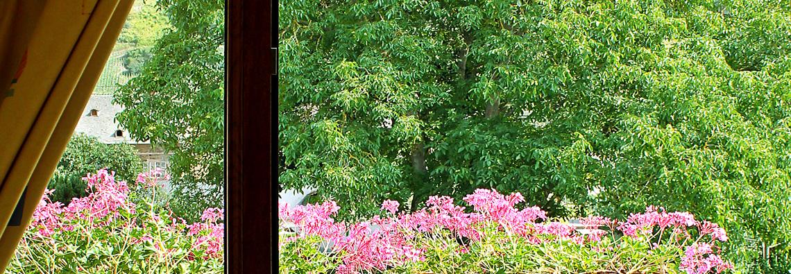 Blick durch die Balkontür in die Natur